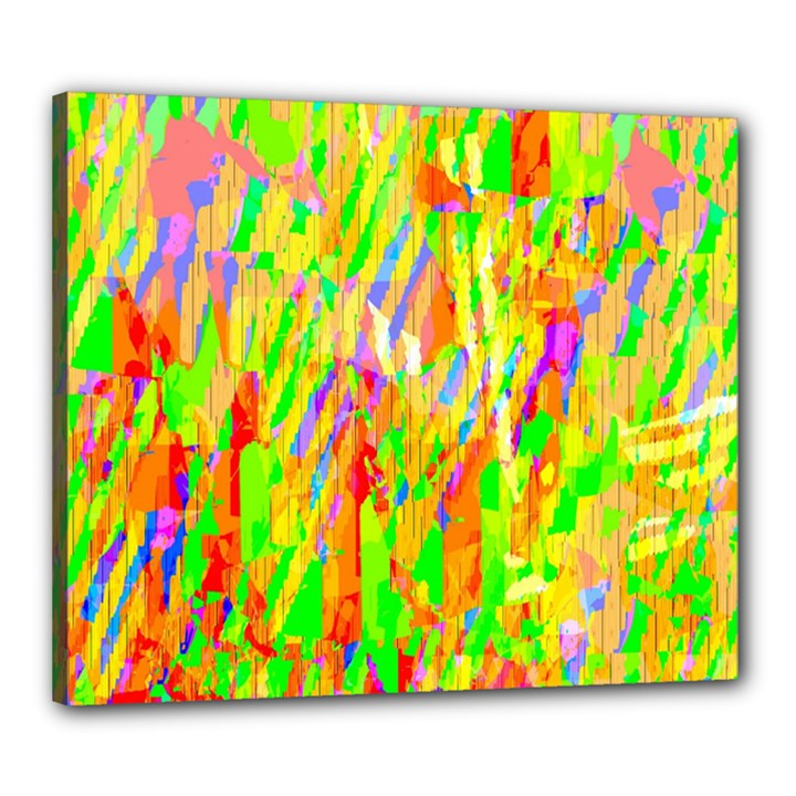 Cheerful Phantasmagoric Pattern Canvas 24  x 20