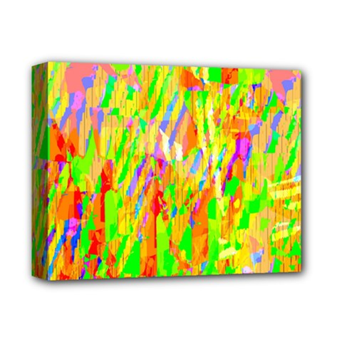 Cheerful Phantasmagoric Pattern Deluxe Canvas 14  x 11