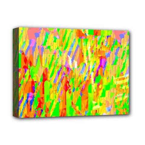 Cheerful Phantasmagoric Pattern Deluxe Canvas 16  x 12