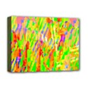 Cheerful Phantasmagoric Pattern Deluxe Canvas 16  x 12   View1