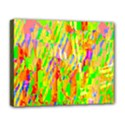 Cheerful Phantasmagoric Pattern Deluxe Canvas 20  x 16   View1