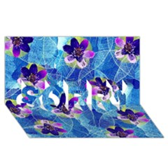 Purple Flowers SORRY 3D Greeting Card (8x4)