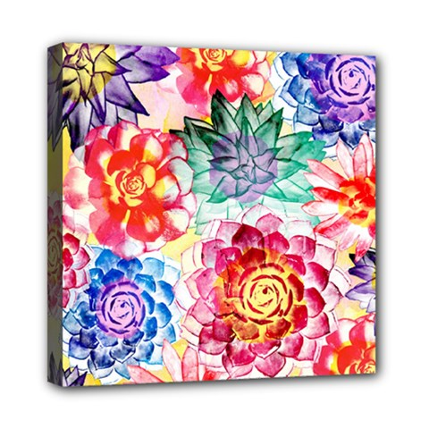 Colorful Succulents Mini Canvas 8  X 8
