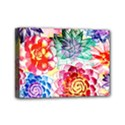 Colorful Succulents Mini Canvas 7  x 5  View1