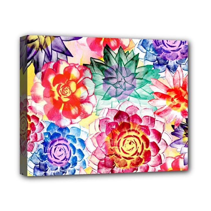 Colorful Succulents Canvas 10  x 8
