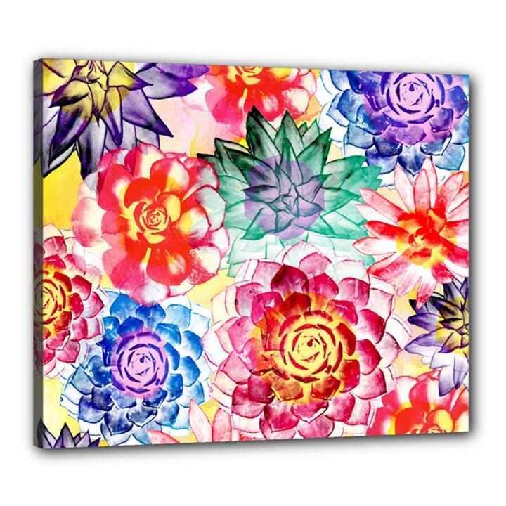 Colorful Succulents Canvas 24  x 20