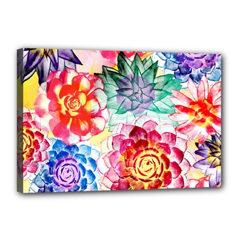 Colorful Succulents Canvas 18  X 12
