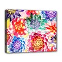Colorful Succulents Deluxe Canvas 20  x 16   View1