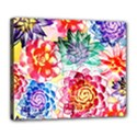 Colorful Succulents Deluxe Canvas 24  x 20   View1