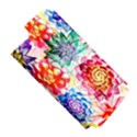 Colorful Succulents Apple iPhone 5 Hardshell Case (PC+Silicone) View5