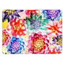 Colorful Succulents Kindle Fire (1st Gen) Flip Case View1