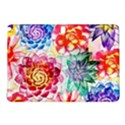 Colorful Succulents Samsung Galaxy Tab Pro 10.1 Hardshell Case View1