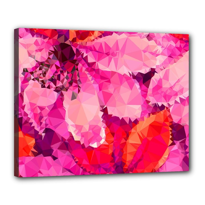 Geometric Magenta Garden Canvas 20  x 16