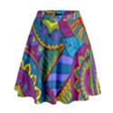 Pop Art Paisley Flowers Ornaments Multicolored High Waist Skirt View1