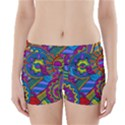 Pop Art Paisley Flowers Ornaments Multicolored Boyleg Bikini Wrap Bottoms View1