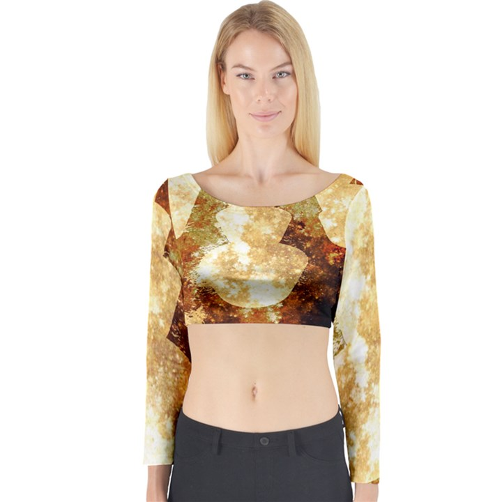 Sparkling Lights Long Sleeve Crop Top