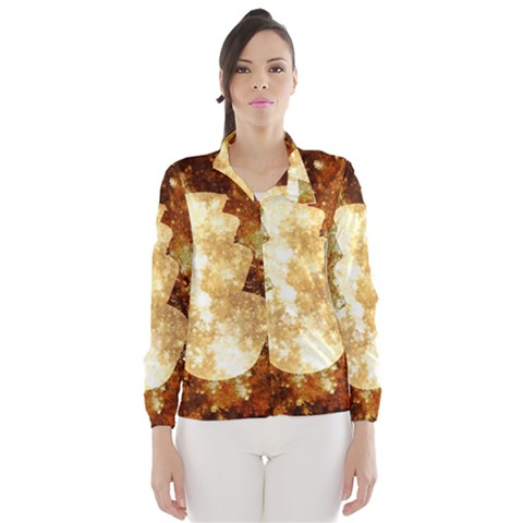 Sparkling Lights Wind Breaker (Women)