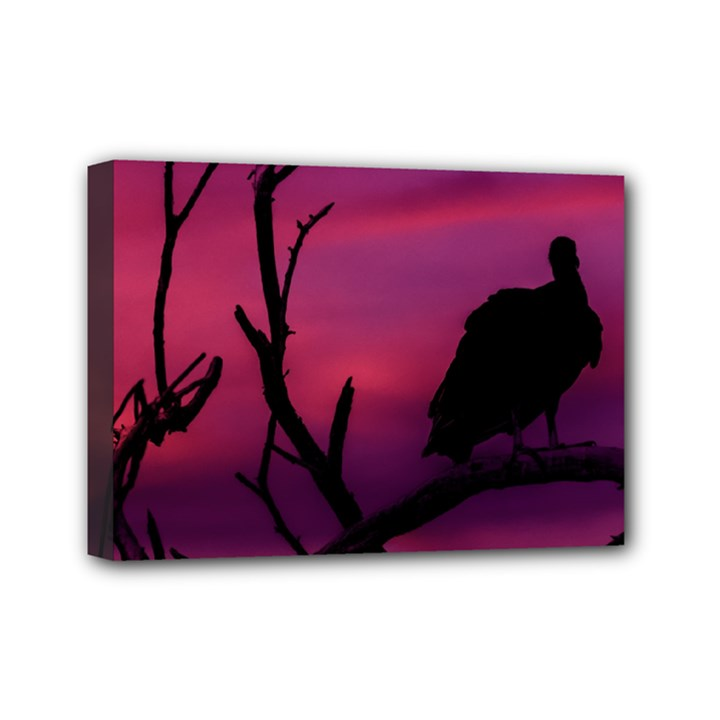 Vultures At Top Of Tree Silhouette Illustration Mini Canvas 7  x 5