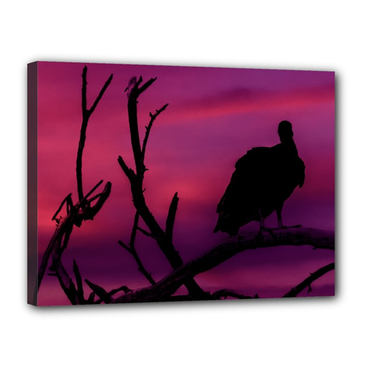 Vultures At Top Of Tree Silhouette Illustration Canvas 16  x 12