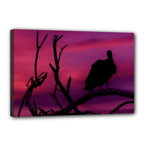 Vultures At Top Of Tree Silhouette Illustration Canvas 18  x 12