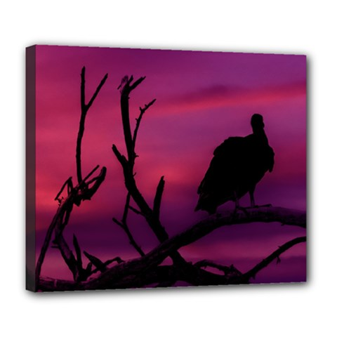 Vultures At Top Of Tree Silhouette Illustration Deluxe Canvas 24  x 20
