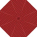 Red Passion Floral Pattern Folding Umbrellas View1