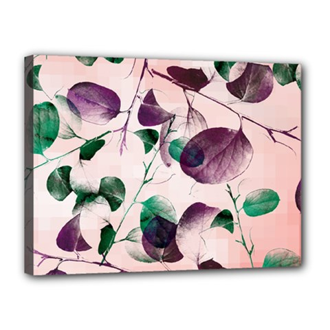 Spiral Eucalyptus Leaves Canvas 16  x 12