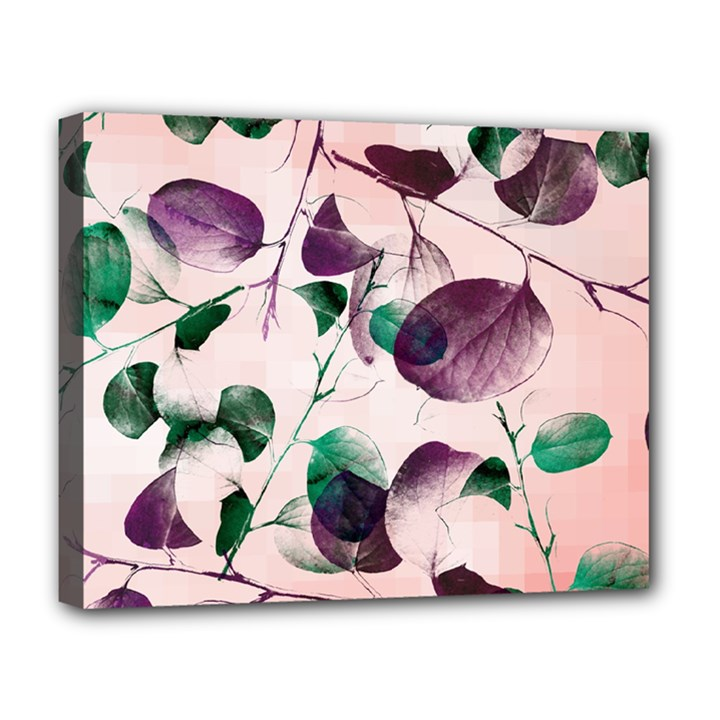 Spiral Eucalyptus Leaves Deluxe Canvas 20  x 16