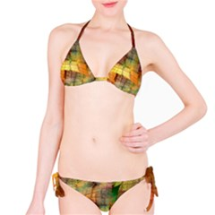 Indian Summer Funny Check Bikini Set