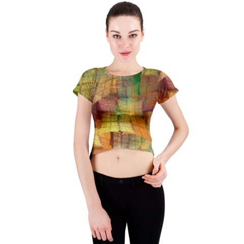 Indian Summer Funny Check Crew Neck Crop Top