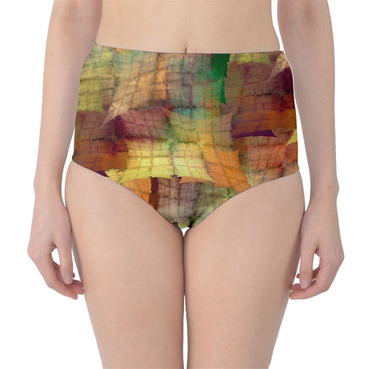 Indian Summer Funny Check High-Waist Bikini Bottoms