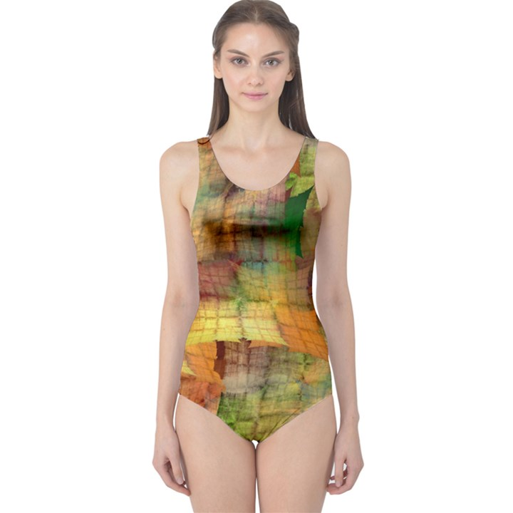 Indian Summer Funny Check One Piece Swimsuit