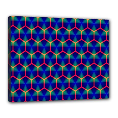 Honeycomb Fractal Art Canvas 20  x 16