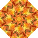 Fall Colors Leaves Pattern Folding Umbrellas View1