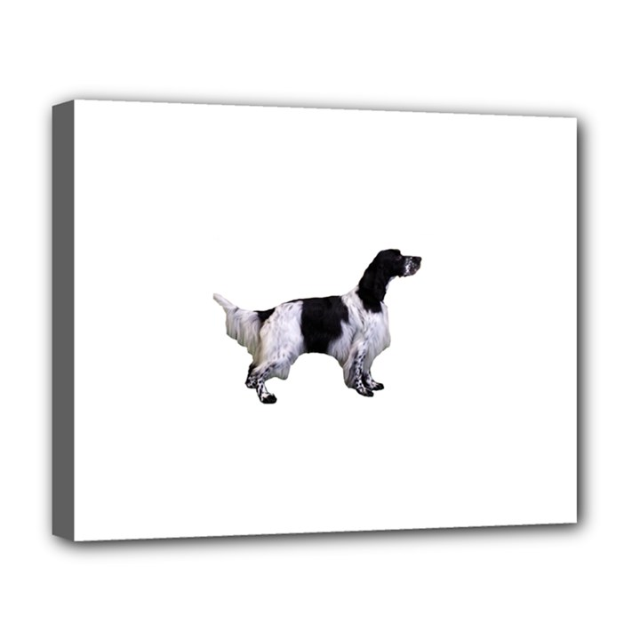 English Setter Full Deluxe Canvas 20  x 16