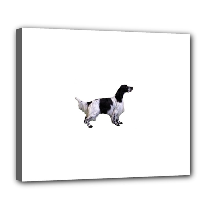 English Setter Full Deluxe Canvas 24  x 20