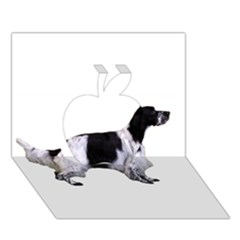 English Setter Full Apple 3D Greeting Card (7x5)
