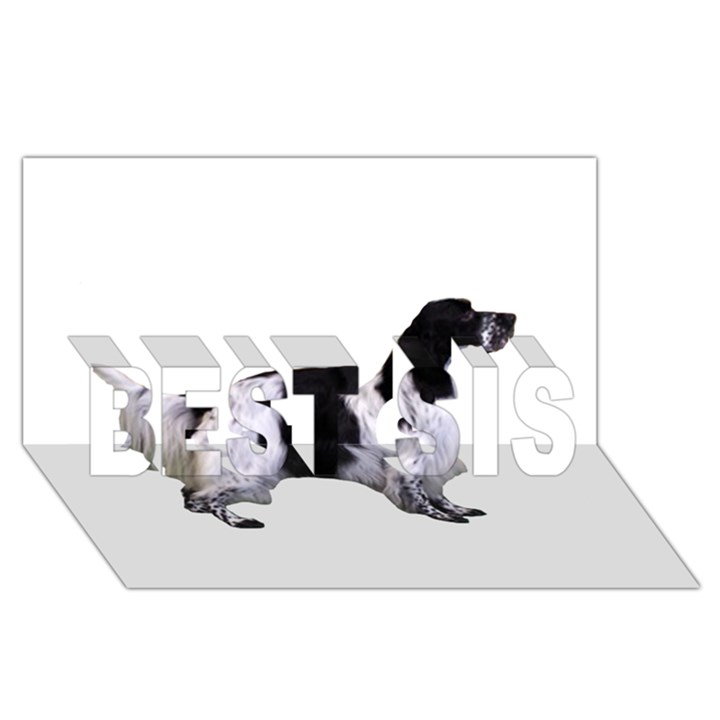 English Setter Full BEST SIS 3D Greeting Card (8x4)