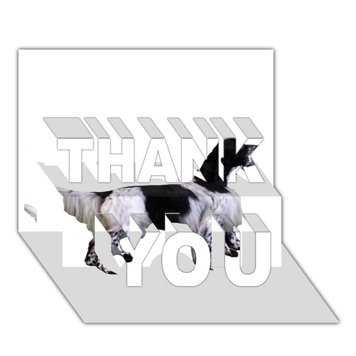 English Setter Full THANK YOU 3D Greeting Card (7x5)