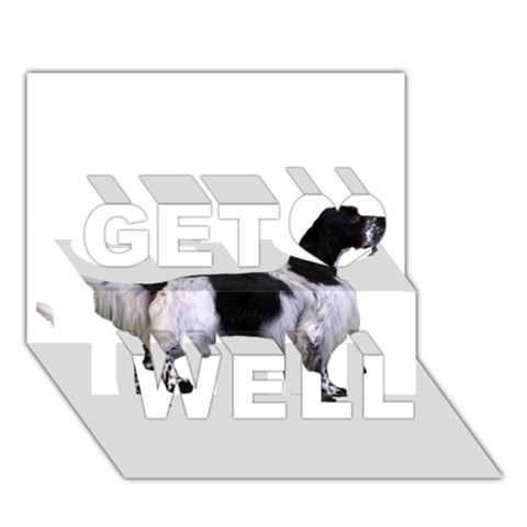 English Setter Full Get Well 3D Greeting Card (7x5)