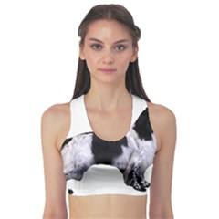 English Setter Full Sports Bra