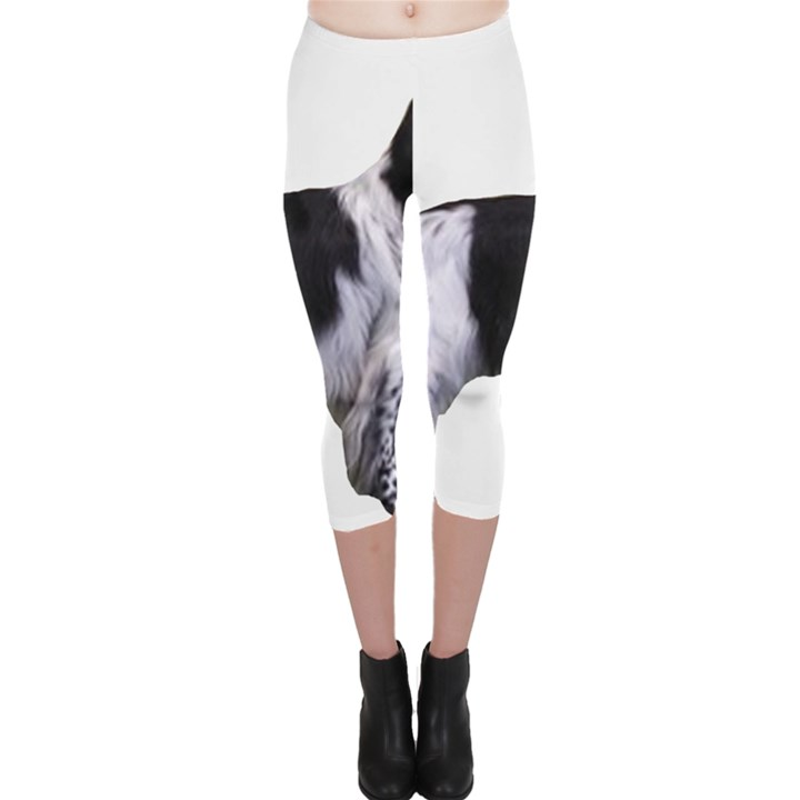 English Setter Full Capri Leggings