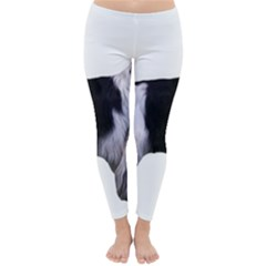 English Setter Full Winter Leggings