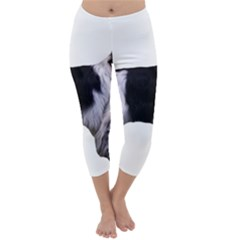 English Setter Full Capri Winter Leggings