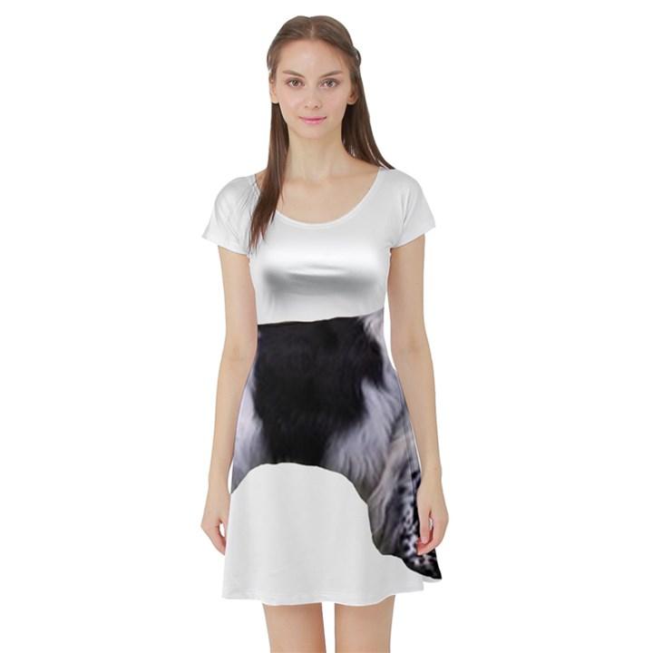 English Setter Full Short Sleeve Skater Dress