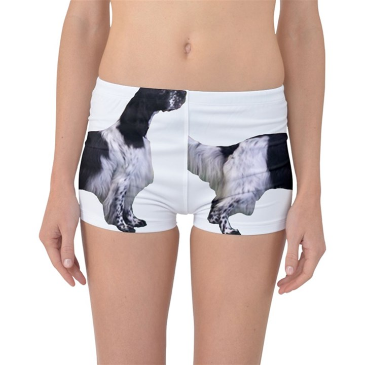 English Setter Full Reversible Boyleg Bikini Bottoms