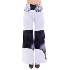 English Setter Full Pants