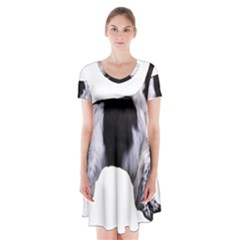 English Setter Full Short Sleeve V-neck Flare Dress