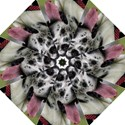 Great Dane harlequin  Folding Umbrellas View1