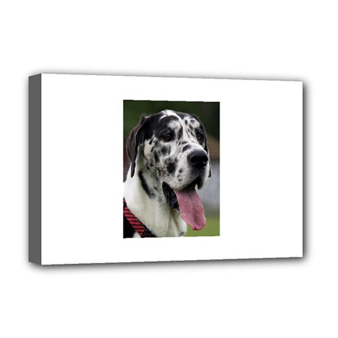 Great Dane harlequin  Deluxe Canvas 18  x 12